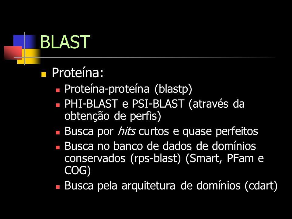 BLAST Proteína: Proteína-proteína (blastp)
