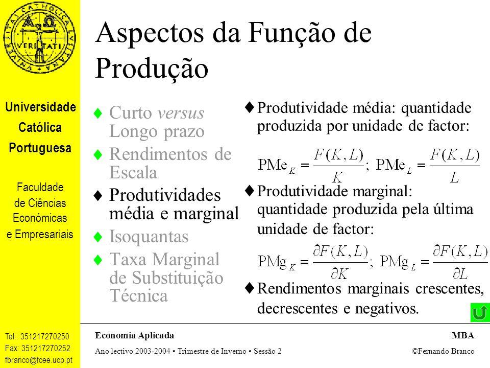 Aspectos da Função de Produção