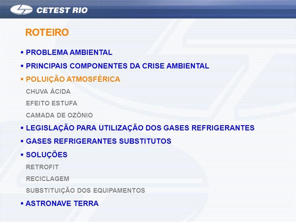 ROTEIRO PROBLEMA AMBIENTAL PRINCIPAIS COMPONENTES DA CRISE AMBIENTAL