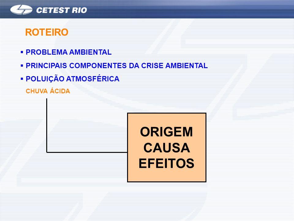 ORIGEM CAUSA EFEITOS ROTEIRO PROBLEMA AMBIENTAL