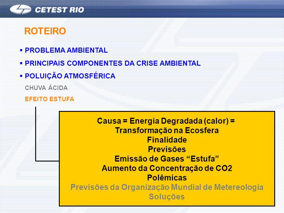 ROTEIRO Causa = Energia Degradada (calor) = Transformação na Ecosfera