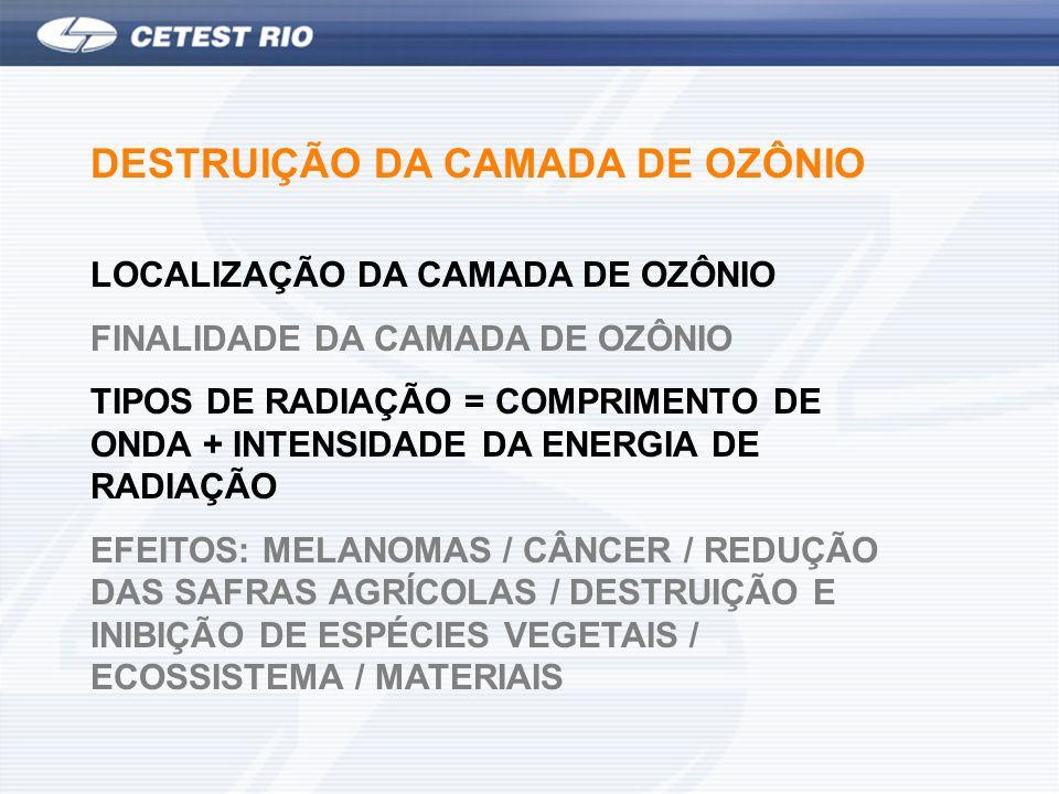 DESTRUIÇÃO DA CAMADA DE OZÔNIO