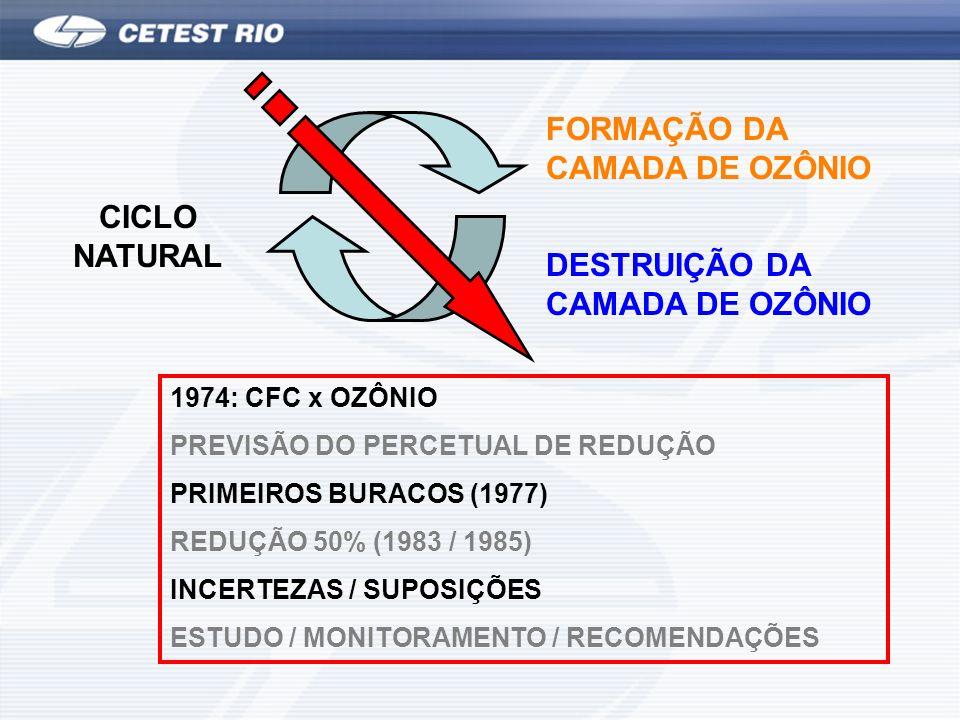 FORMAÇÃO DA CAMADA DE OZÔNIO