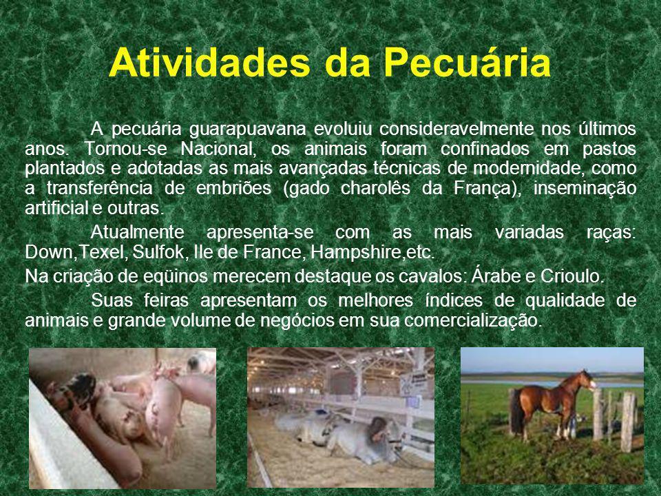 Atividades da Pecuária