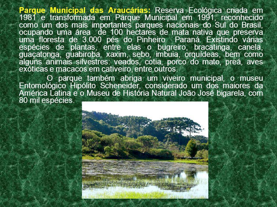Parque Municipal das Araucárias: Reserva Ecológica criada em 1981 e transformada em Parque Municipal em 1991, reconhecido como um dos mais importantes parques nacionais do Sul do Brasil, ocupando uma área de 100 hectares de mata nativa que preserva uma floresta de 3.000 pés do Pinheiro Paraná. Existindo várias espécies de plantas, entre elas o bugreiro, bracatinga, canela, guaçatonga, guabiroba, xaxim, sebo, imbuia, orquídeas, bem como alguns animais silvestres: veados, cotia, porco do mato, preá, aves exóticas e macacos em cativeiro, entre outros.