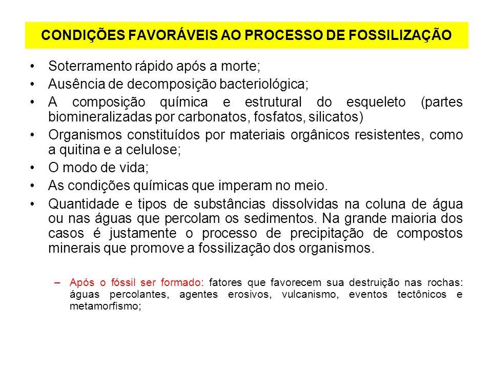 CONDIÇÕES FAVORÁVEIS AO PROCESSO DE FOSSILIZAÇÃO