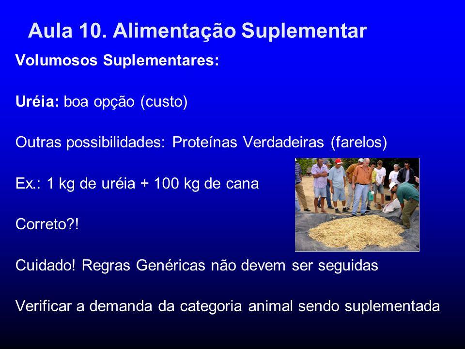 Aula 10. Alimentação Suplementar
