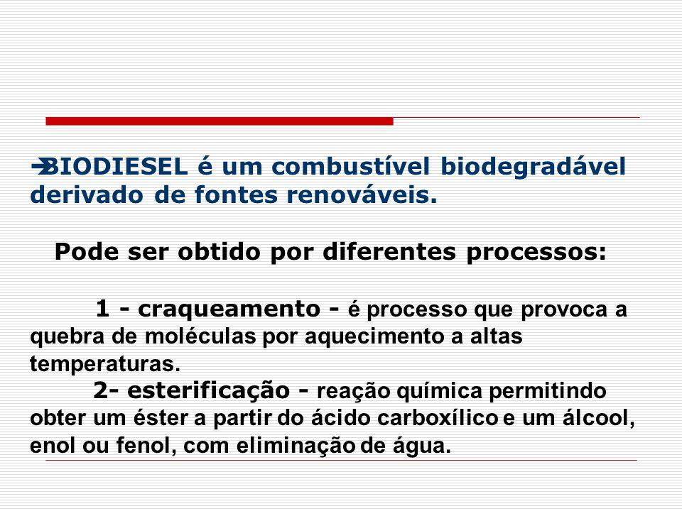 BIODIESEL é um combustível biodegradável derivado de fontes renováveis