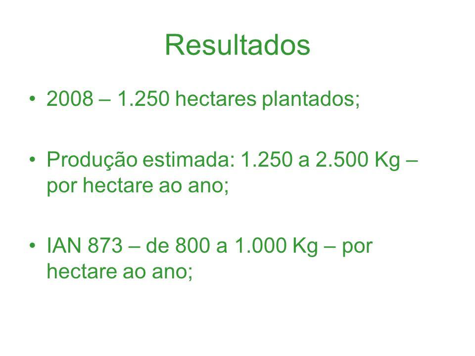 Resultados 2008 – 1.250 hectares plantados;