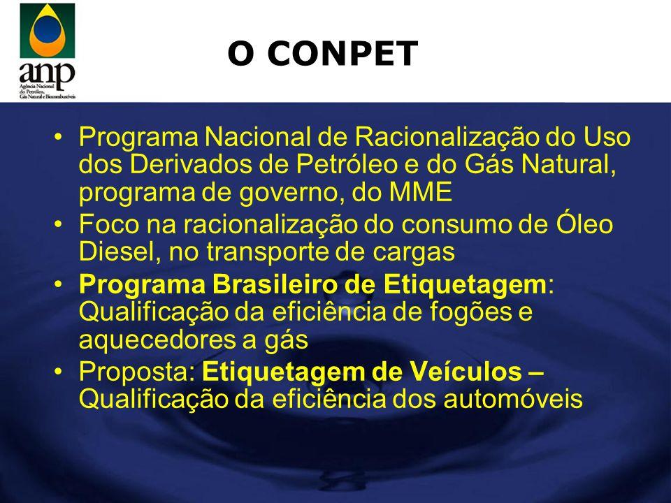 O CONPET Programa Nacional de Racionalização do Uso dos Derivados de Petróleo e do Gás Natural, programa de governo, do MME.