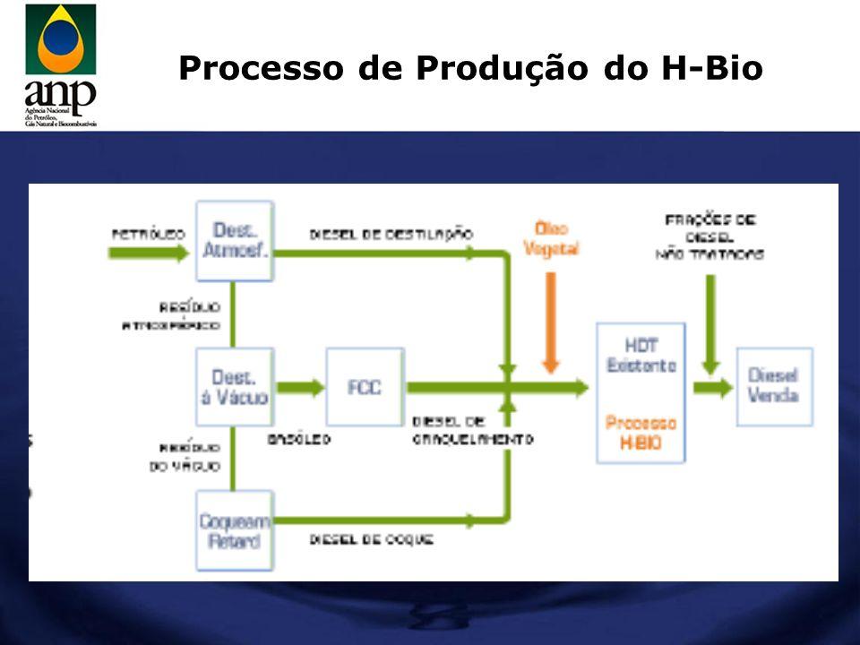 Processo de Produção do H-Bio