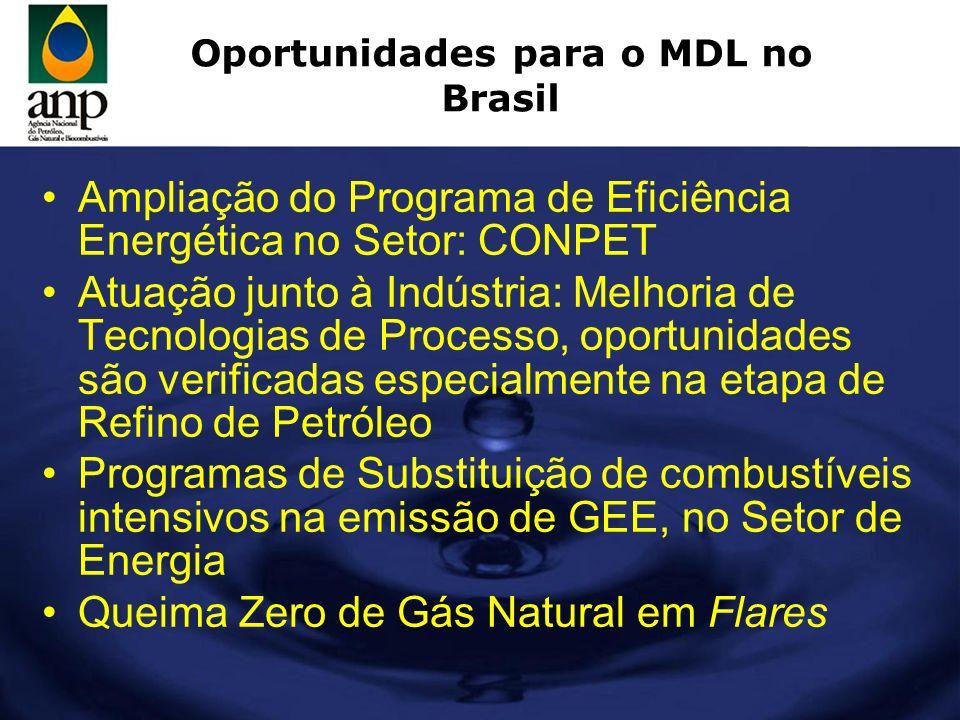 Oportunidades para o MDL no Brasil