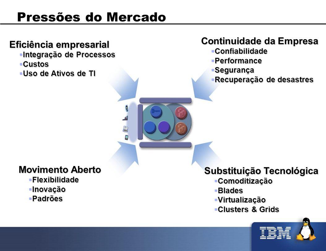 Pressões do Mercado Continuidade da Empresa Eficiência empresarial