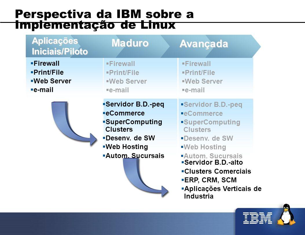 Perspectiva da IBM sobre a Implementação de Linux