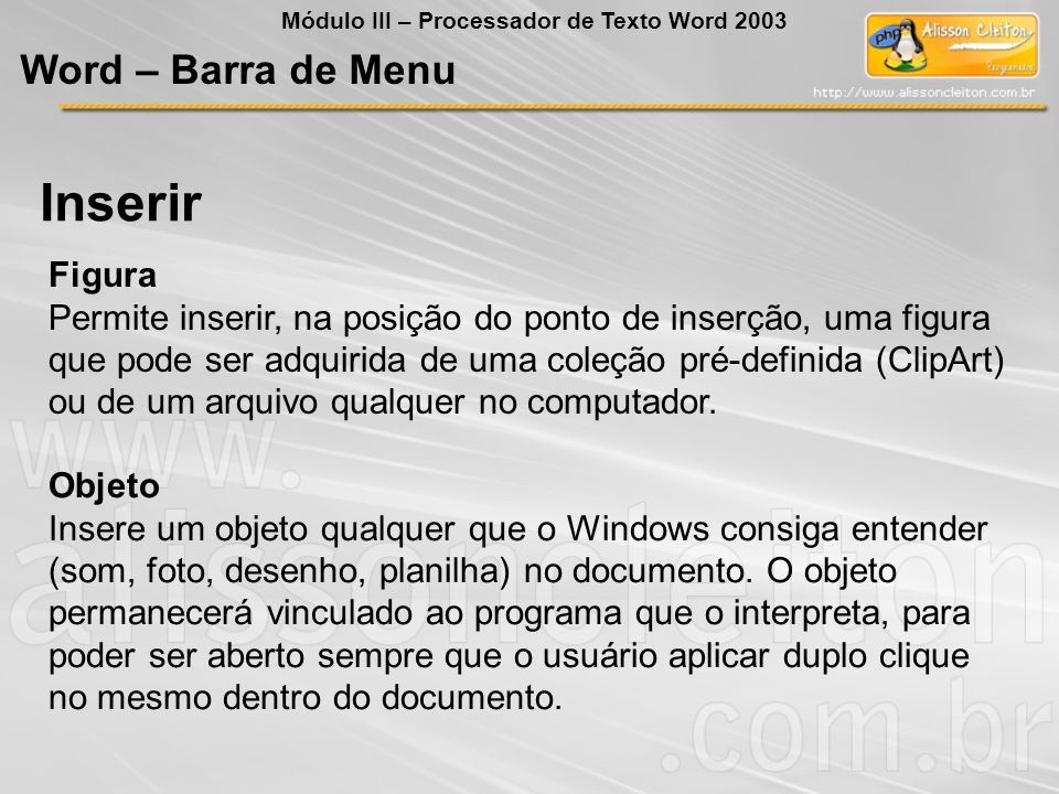 Inserir Word – Barra de Menu Figura