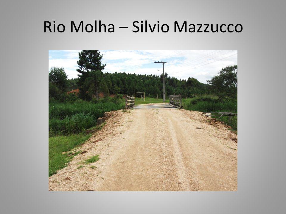 Rio Molha – Silvio Mazzucco