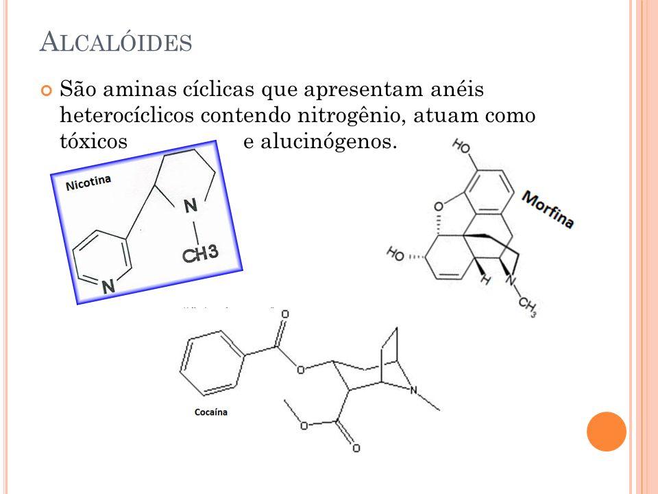 Alcalóides São aminas cíclicas que apresentam anéis heterocíclicos contendo nitrogênio, atuam como tóxicos e alucinógenos.