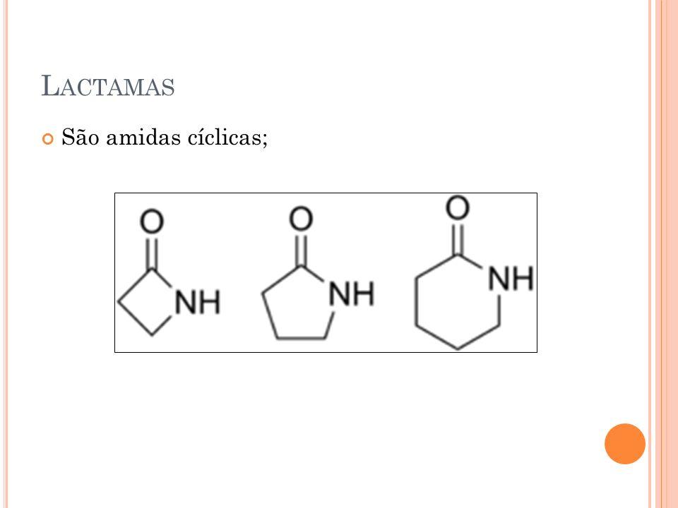Lactamas São amidas cíclicas;