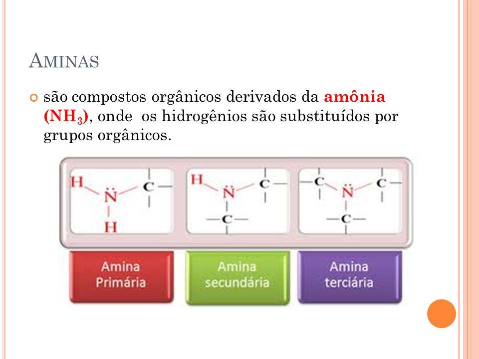 Aminas são compostos orgânicos derivados da amônia (NH3), onde os hidrogênios são substituídos por grupos orgânicos.