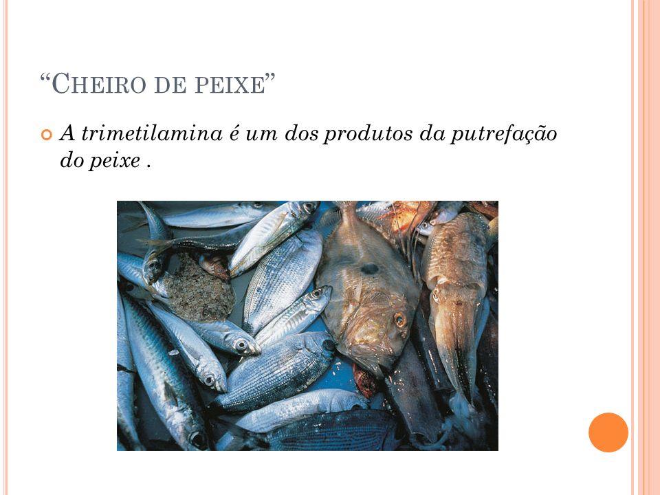 Cheiro de peixe A trimetilamina é um dos produtos da putrefação do peixe .