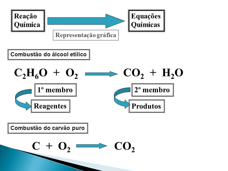 C2H6O + O2 CO2 + H2O C + O2 CO2 1º membro 2º membro Reagentes Produtos