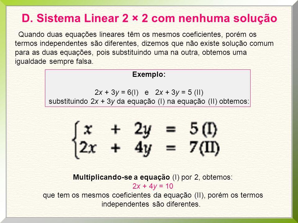 D. Sistema Linear 2 × 2 com nenhuma solução