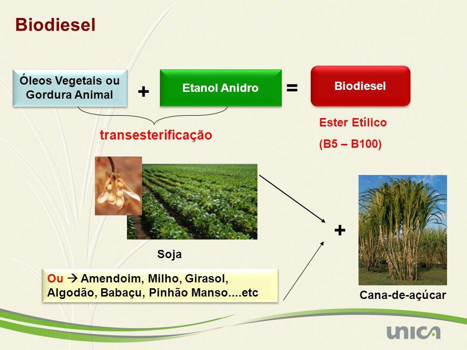 = + + Biodiesel transesterificação Óleos Vegetais ou Biodiesel