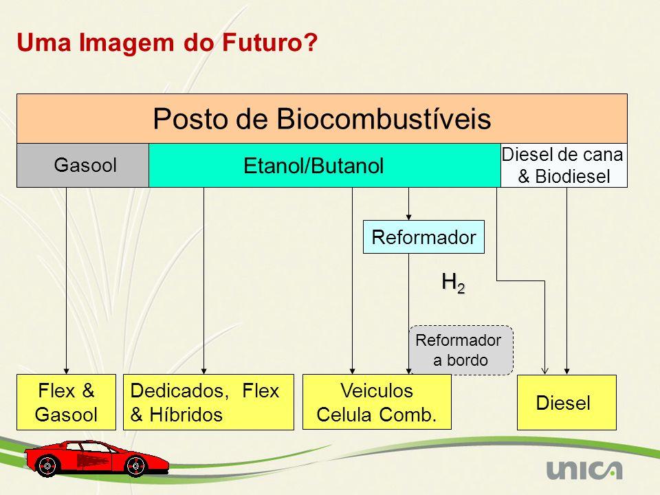Posto de Biocombustíveis