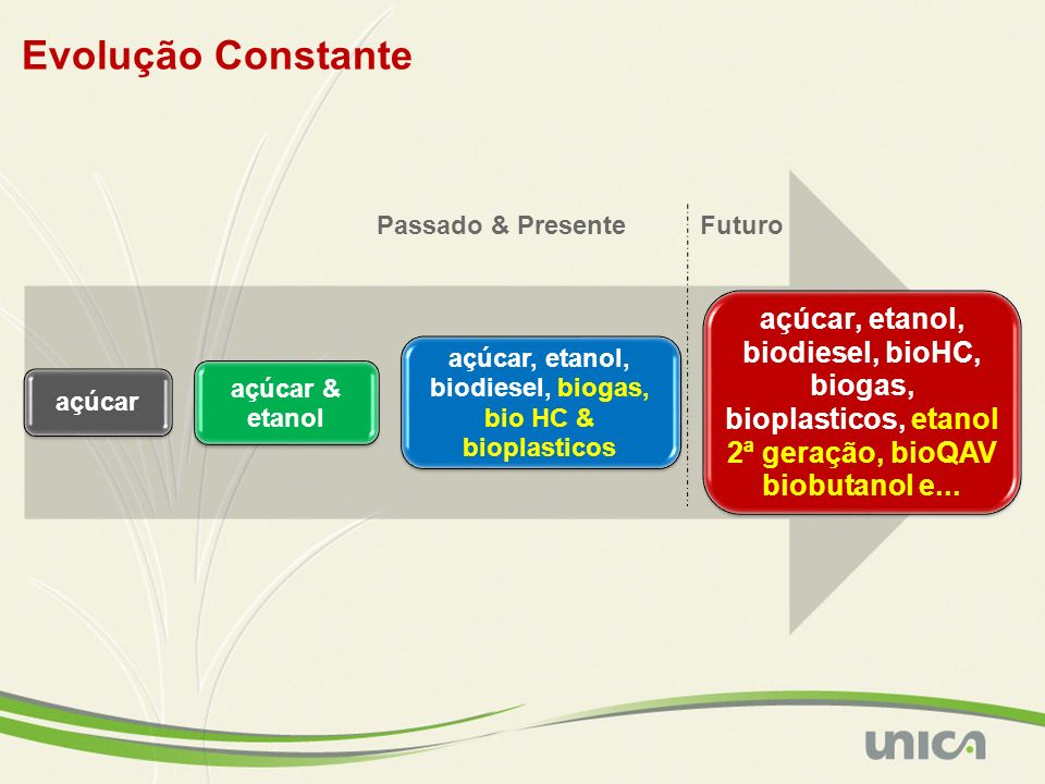 açúcar, etanol, biodiesel, biogas, bio HC & bioplasticos