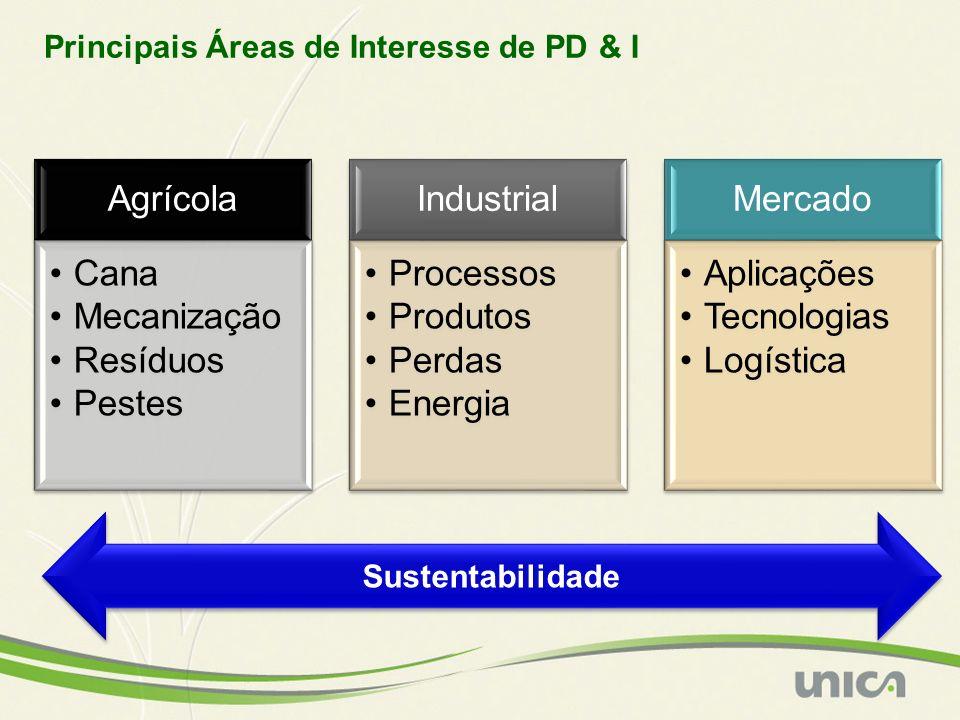 Agrícola Cana Mecanização Resíduos Pestes Industrial Processos