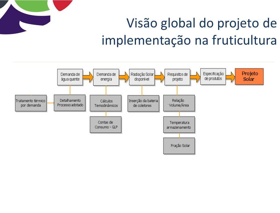 Visão global do projeto de implementação na fruticultura