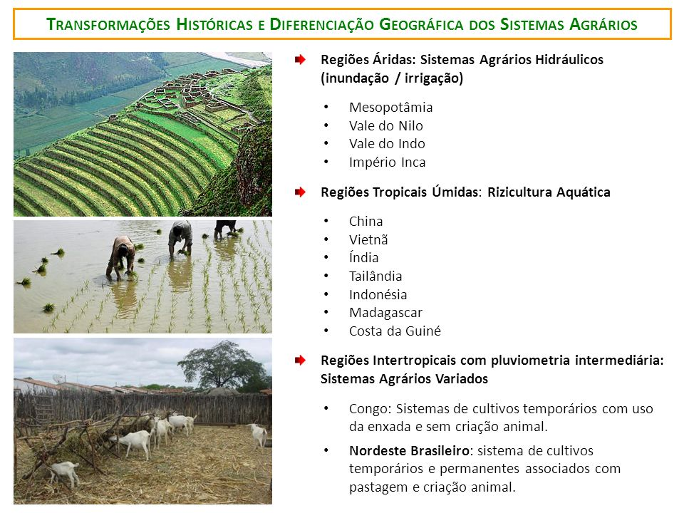 Transformações Históricas e Diferenciação Geográfica dos Sistemas Agrários