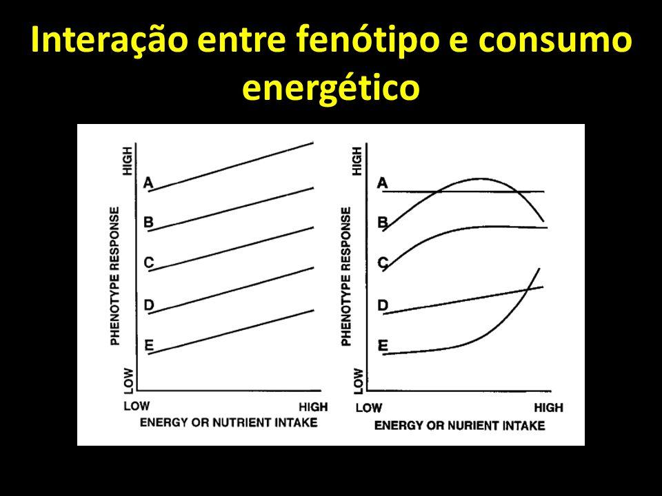 Interação entre fenótipo e consumo energético