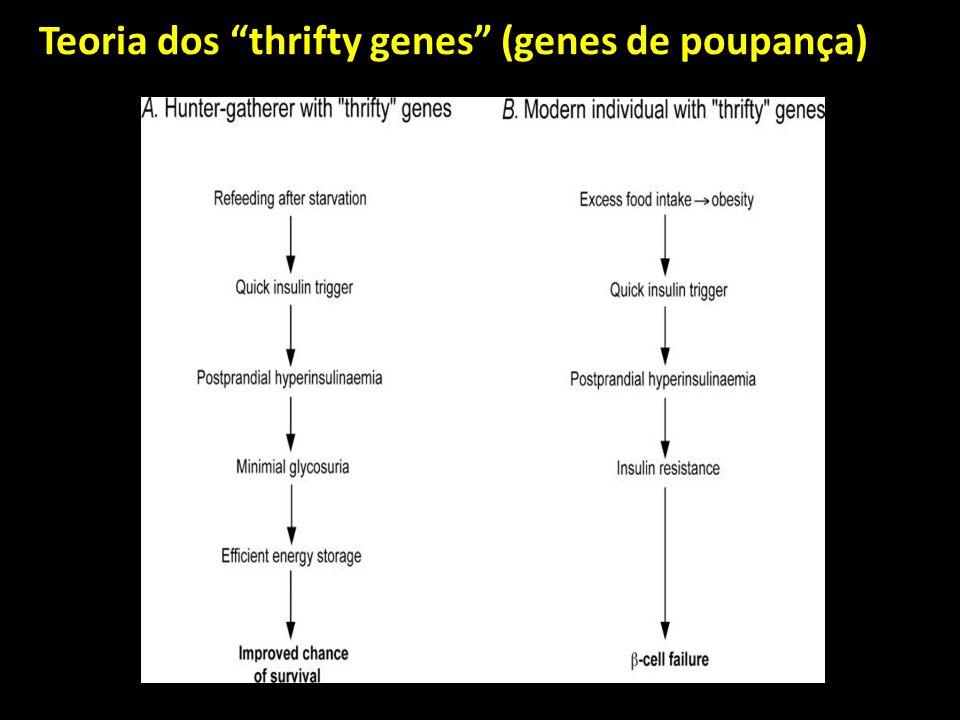 Teoria dos thrifty genes (genes de poupança)