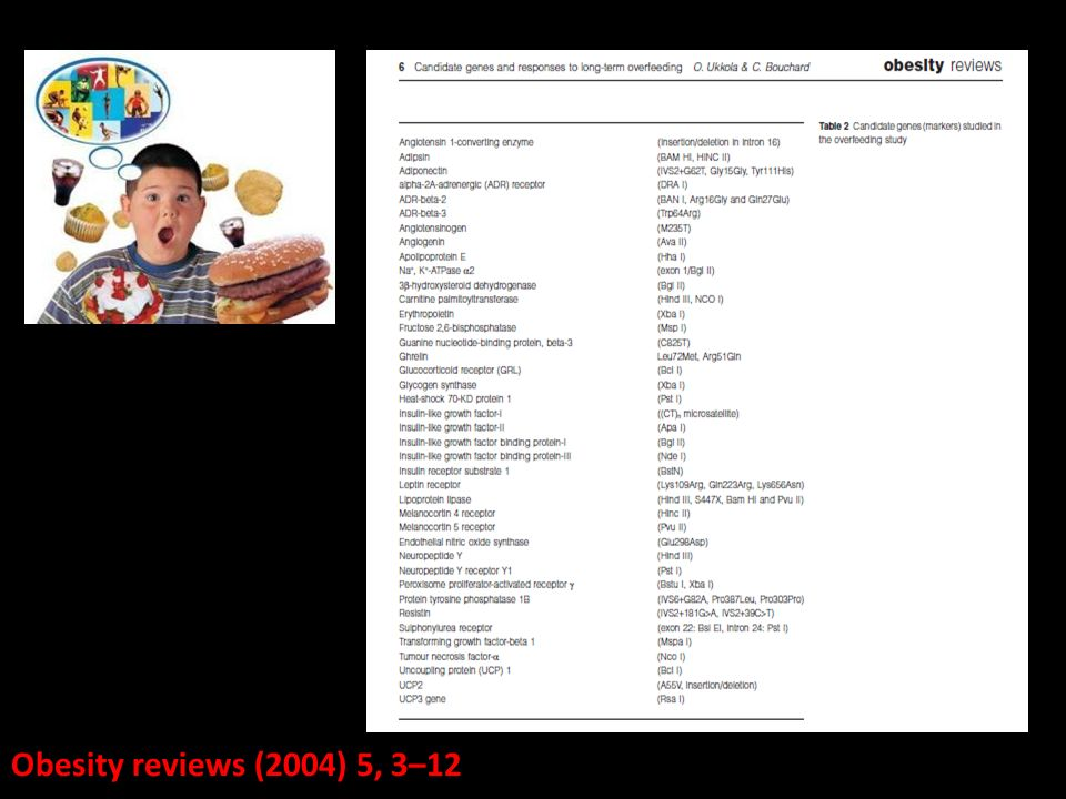 Obesity reviews (2004) 5, 3–12