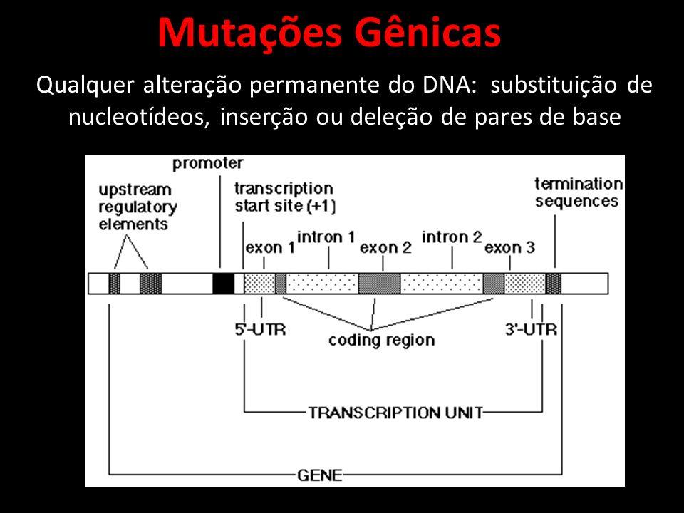 Mutações Gênicas Qualquer alteração permanente do DNA: substituição de nucleotídeos, inserção ou deleção de pares de base.