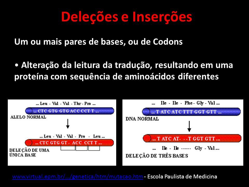 Deleções e Inserções Um ou mais pares de bases, ou de Codons