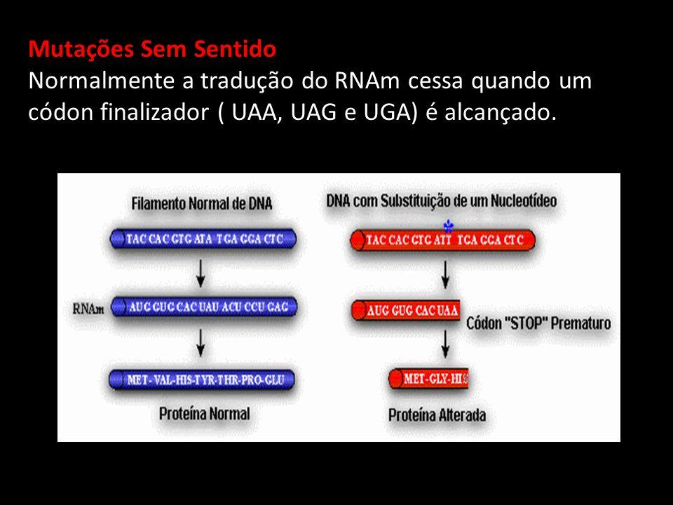 Mutações Sem Sentido Normalmente a tradução do RNAm cessa quando um códon finalizador ( UAA, UAG e UGA) é alcançado.