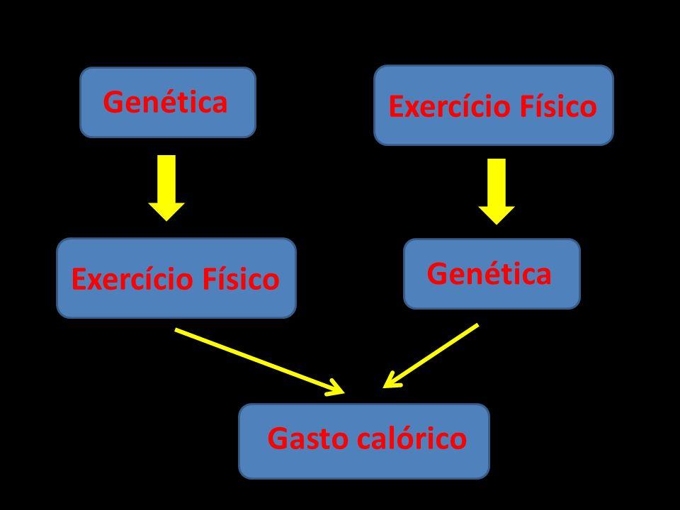 Genética Exercício Físico Exercício Físico Genética Gasto calórico