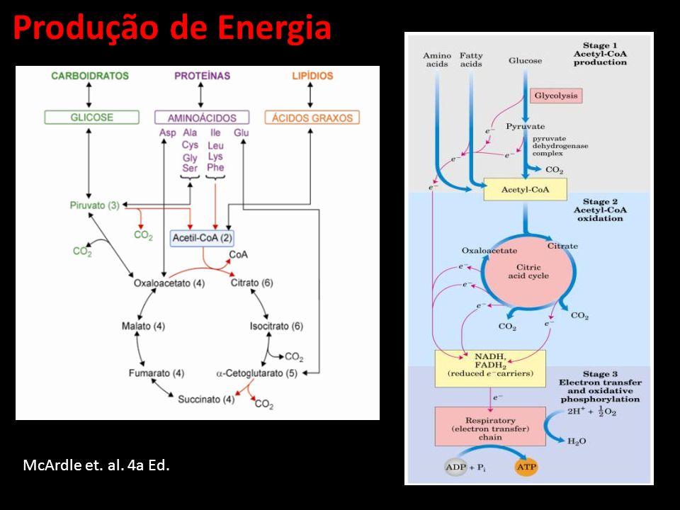 Produção de Energia McArdle et. al. 4a Ed.