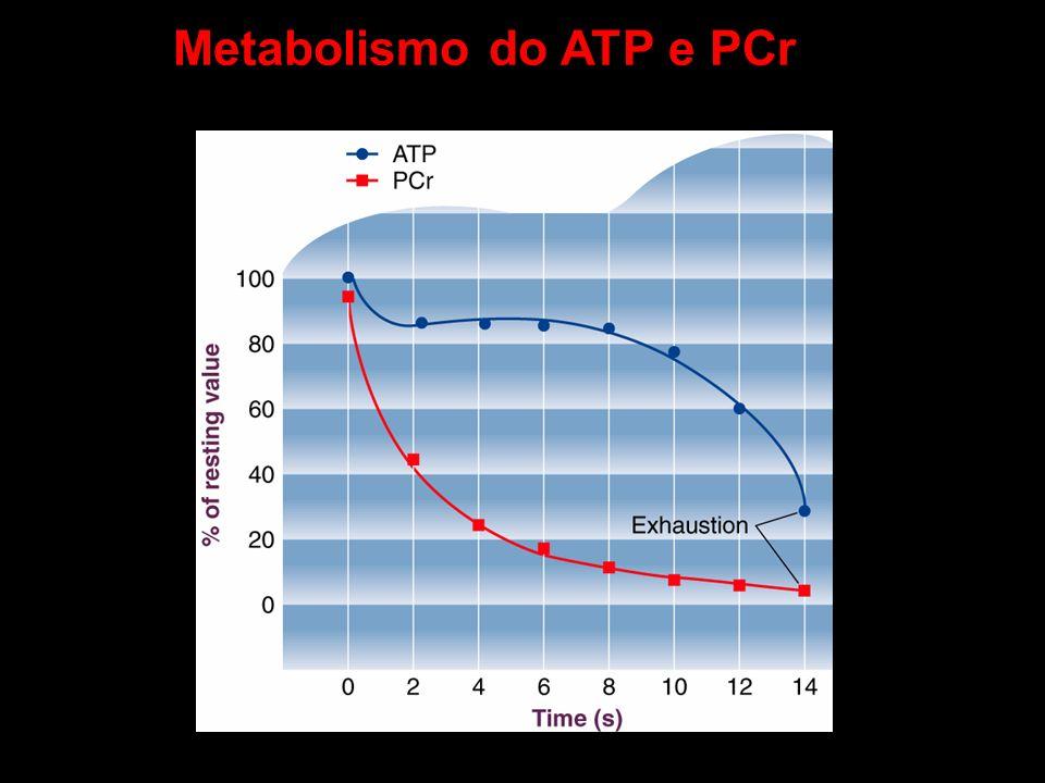 Metabolismo do ATP e PCr