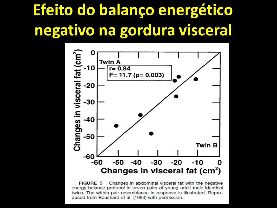 Efeito do balanço energético negativo na gordura visceral