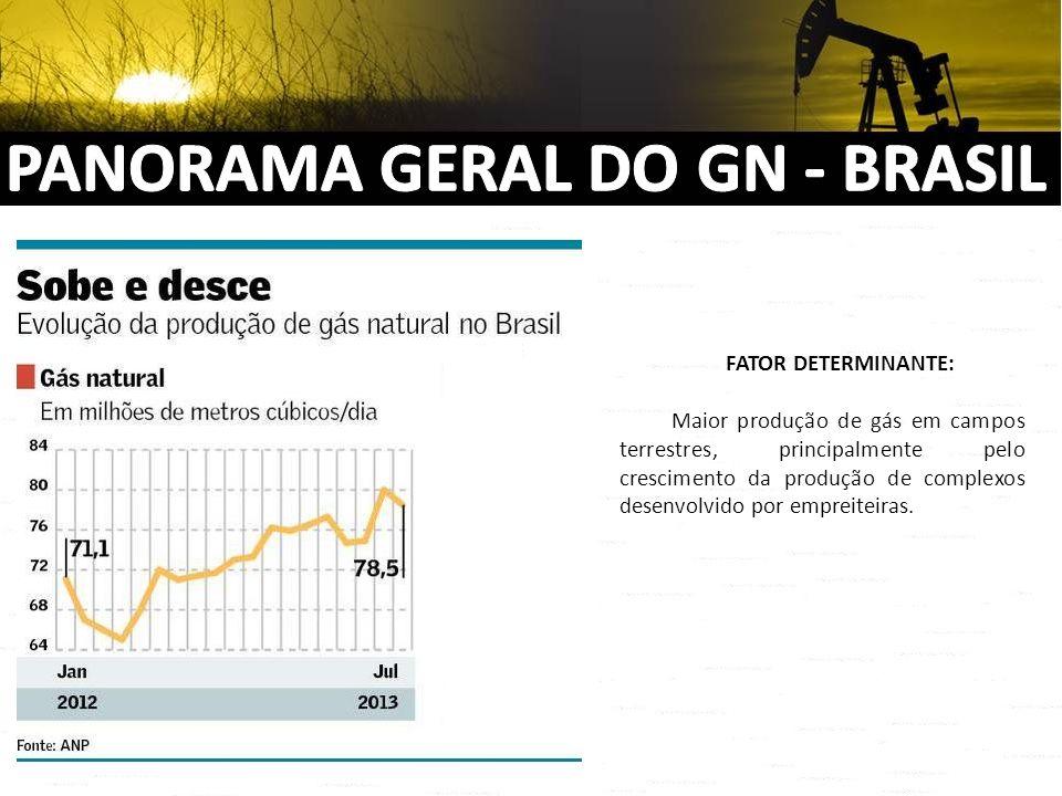 PANORAMA GERAL DO GN - BRASIL