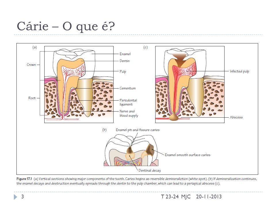Cárie – O que é saliva T 23-24 MJC 20-11-2013