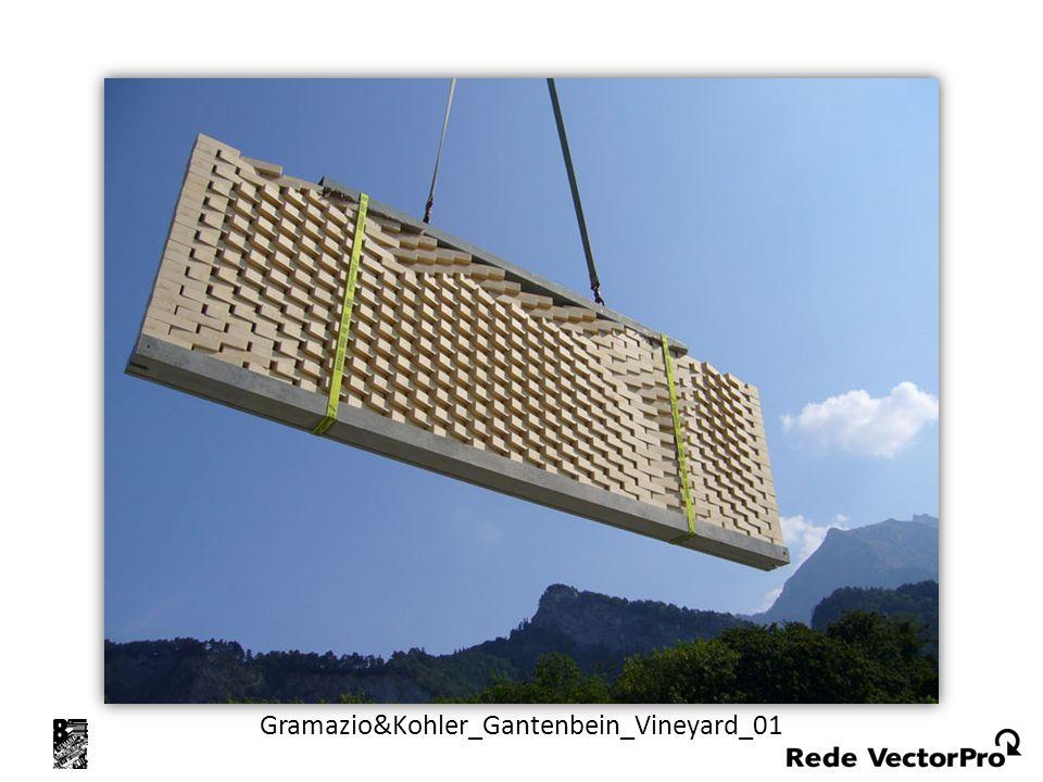 Gramazio&Kohler_Gantenbein_Vineyard_01