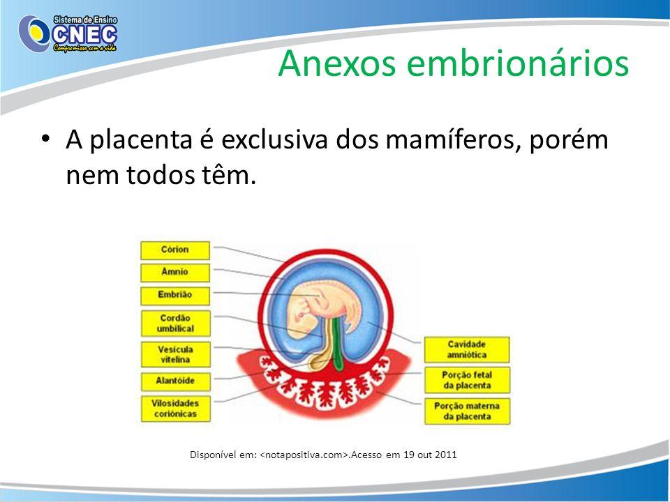 Anexos embrionários A placenta é exclusiva dos mamíferos, porém nem todos têm.