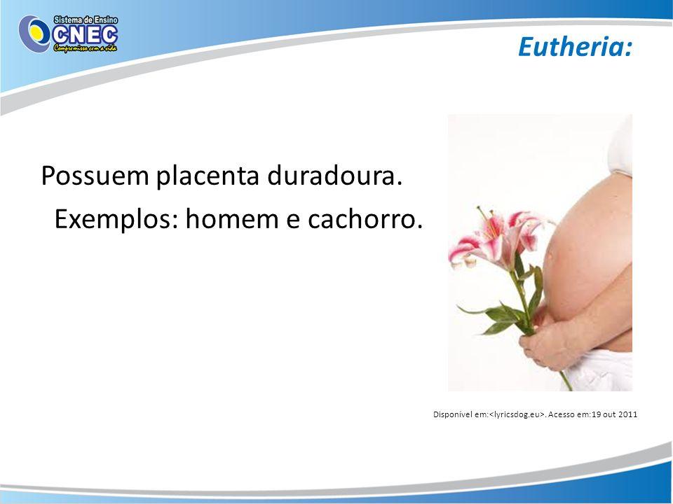 Eutheria: Possuem placenta duradoura. Exemplos: homem e cachorro.