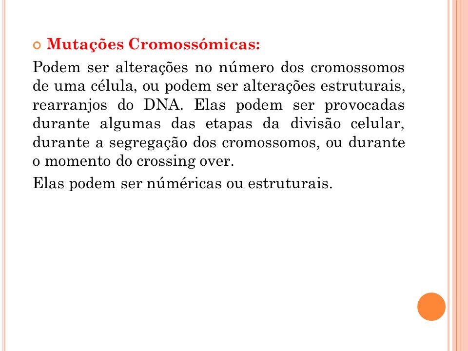Mutações Cromossómicas: