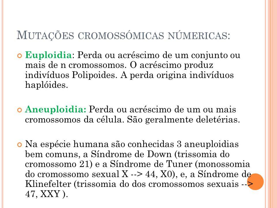 Mutações cromossómicas númericas: