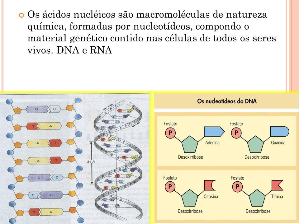 Os ácidos nucléicos são macromoléculas de natureza química, formadas por nucleotídeos, compondo o material genético contido nas células de todos os seres vivos.